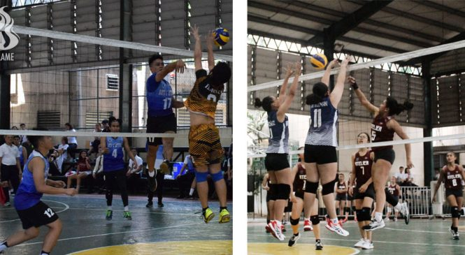 AB Volleyball teams wiped out in Goodwill quarters