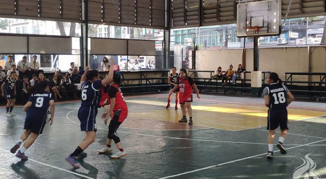 AB basketball teams dominate Goodwill openings